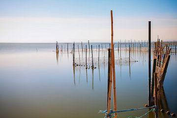 Lagune von Albufera von Truus Nijland