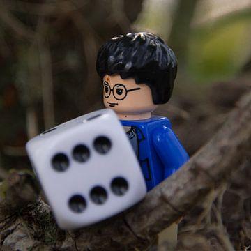 Harry Potter en de dobbelsteen  van Jolien Luyten
