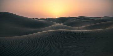 Rub Al Khali Empty Quarter Wüste im Oman