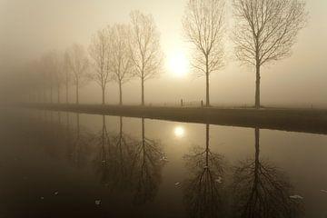 Bomen in de mist von Ron ter Burg