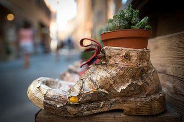 Schoen als bloempot, Italië  van Jenco van Zalk