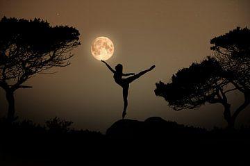 Dansen in het maanlight van