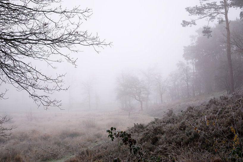 Mist van Ineke Klaassen