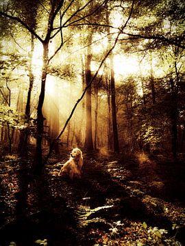 Hond in bos van Erica Kuiper