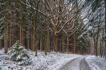 De eerste sneeuw van Uwe Ulrich Grün