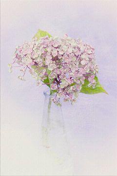 Painted look Hortensia sur Marga Goudsbloem