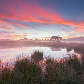 Zonsopkomst bij een meertje op de Veluwezoom. van Rob Christiaans
