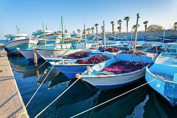 Viele Fischerboote liegen im Hafen in der Nähe der Stadt Hurghada in Ägypten an. von Ben Schonewille