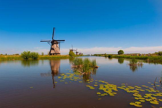 Windmills on Kinderdijk Holland