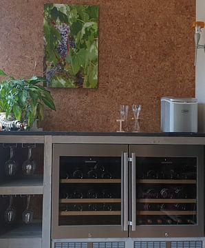 Klantfoto: De druiven in Toscane voor de heerlijke Italiaanse Chianti wijn van Michel Geluk