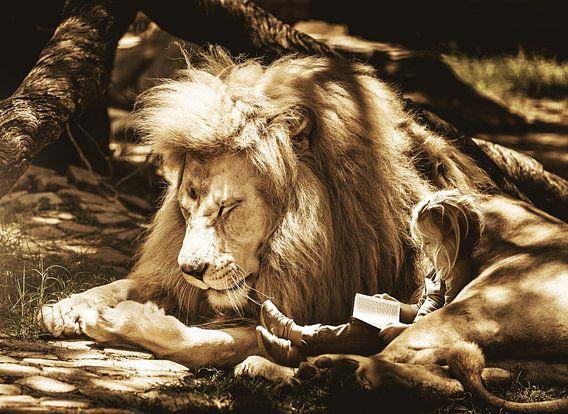 Leeuw met meisje kleuter beeldmanipulatie van Sarah Richter