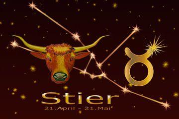 Sternzeichen - Stier von Christine Nöhmeier