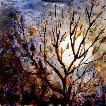 Mondbaum von Christine Nöhmeier