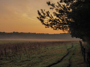 Leudale Morgendämmerung von Wendy Drent