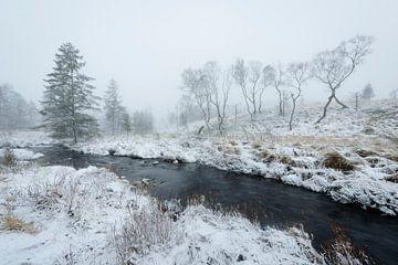 Rivier in sneeuwlandschap van Michel Lucas
