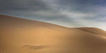 Dunes desert von
