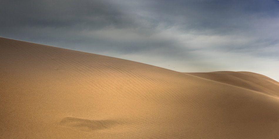 Woestijn duinen