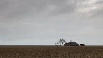 Einsamer Bauernhof von Dick Doorduin