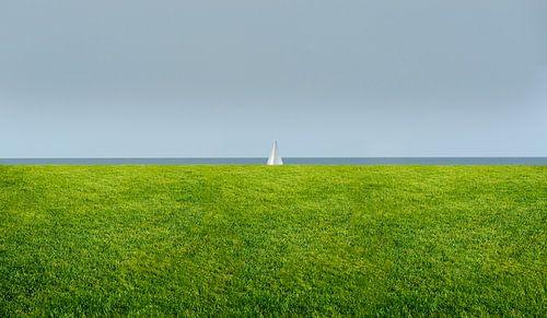 3139 sail