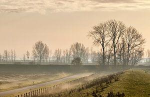 Wintermorgen von Sven Zoeteman