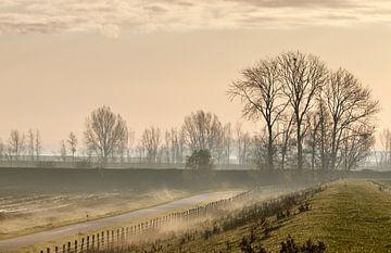 Winterochtend van Sven Zoeteman