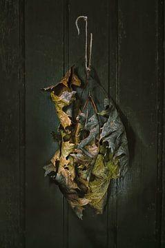 Bronzen herfst van Hannie Kassenaar