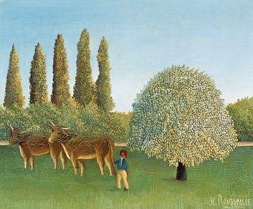 L'herbage, Henri Rousseau sur