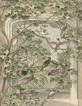 Voliere mit vierzehn Vögeln, Aert Schouman