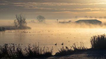 Ochtendmist in de winter van Wouter Bos