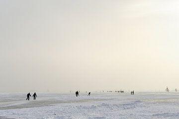 Schaatsers en ijszeilers op de Gouwzee von Merijn van der Vliet