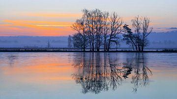 Daybreak scène met bevroren wetland weerspiegeld in het water van Tony Vingerhoets