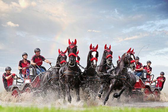 Paarden menwedstrijd van PAM fotostudio
