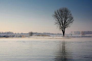 Mist over de rivier op winterse dag van Yvonne Smits