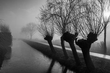 Langerak in de mist 1 von Pauline Aalfs