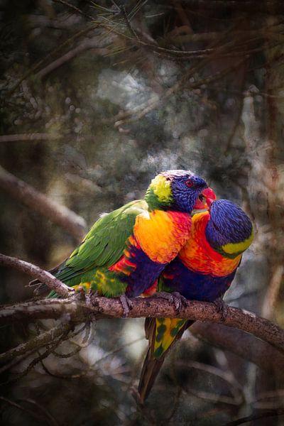 Twee papegaaien van Peter Mensink