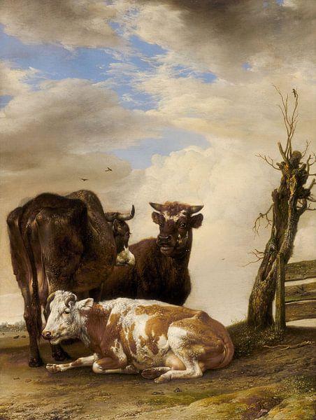 Twee koeien en een jonge stier naast een hek, Paulus Potter (gezien bij vtwonen) van Meesterlijcke Meesters