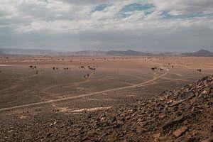 Marokko landschap 6 van