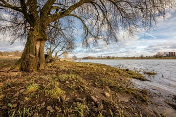 Limburgse luchten aan de Maas von Daan van Oort