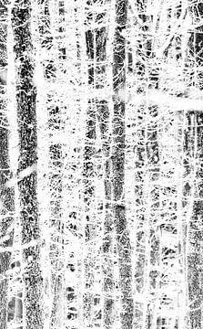 Bomen grafisch van peter reinders