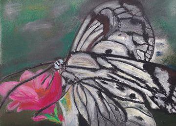 Zwart-witte vlinder met roze bloem van Catharina Mastenbroek