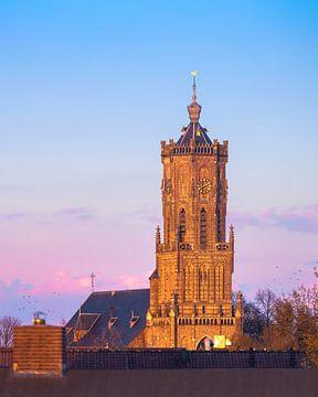 Elster toren tijdens zonsondergang van Nicky Kapel