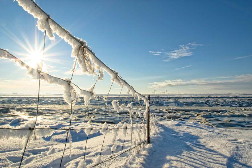 Winter am Dockkoog bei Husum von Annette Sturm