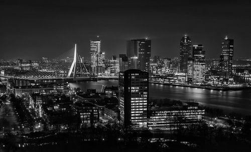 Skyline Rotterdam 2014 in Zwart-Wit van