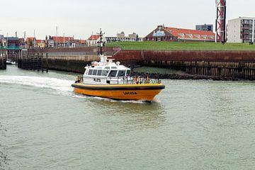 Lotsenboot Lucida von MSP Canvas
