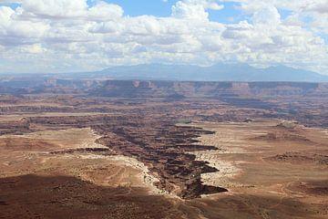 Canyonlands National Park Verenigde Staten von Martin van den Berg Mandy Steehouwer