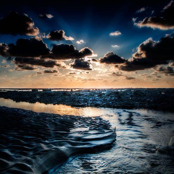 Back to the sea van Ruud Peters