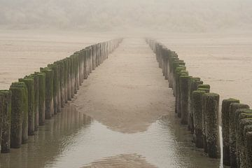 Paalhoofden in de mist von Bas Verschoor
