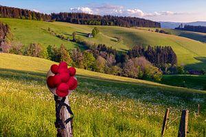 Schwarzwaldlandschaft mit Original Bollenhut von Jürgen Wiesler