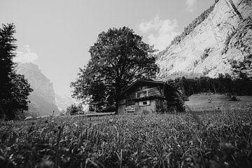 Hütte im Gras, Lauterbrunnen, Schweiz   Holzhütte Landschaftsfotografie   Schwarzweiß von Ilse Stronks   Lines and light inspired travel photography