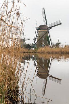 Molens werelderfgoed Kinderdijk von Mark den Boer